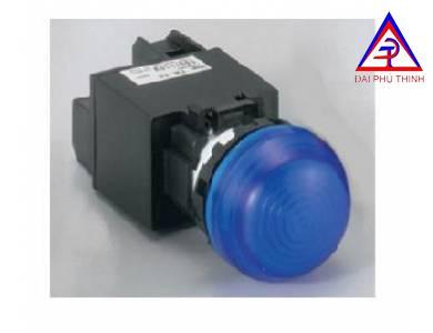 Đèn Led dạng vòm không biến thế Ø 22, 6V AC/DC YW1P-2EQ2 ( G, S, PW )